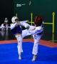 P1-fd09709.jpg