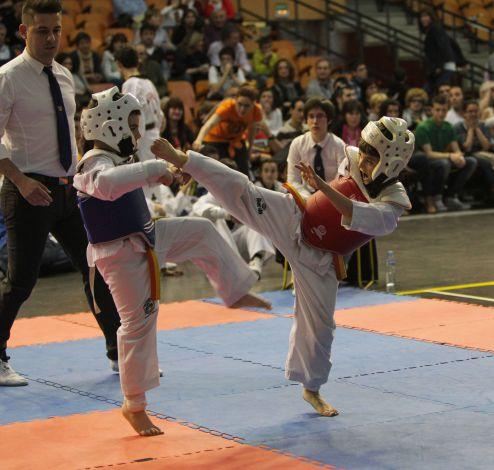 Taekwondo-5