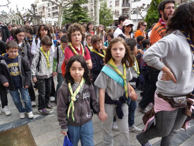 Festival Scout-19