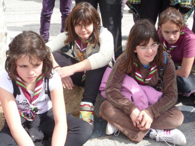 Festival Scout-8